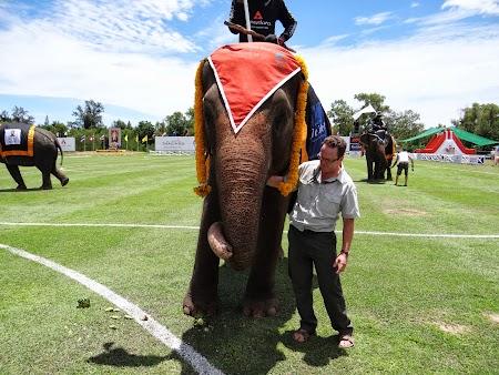 27. Lectie despre elefanti.JPG