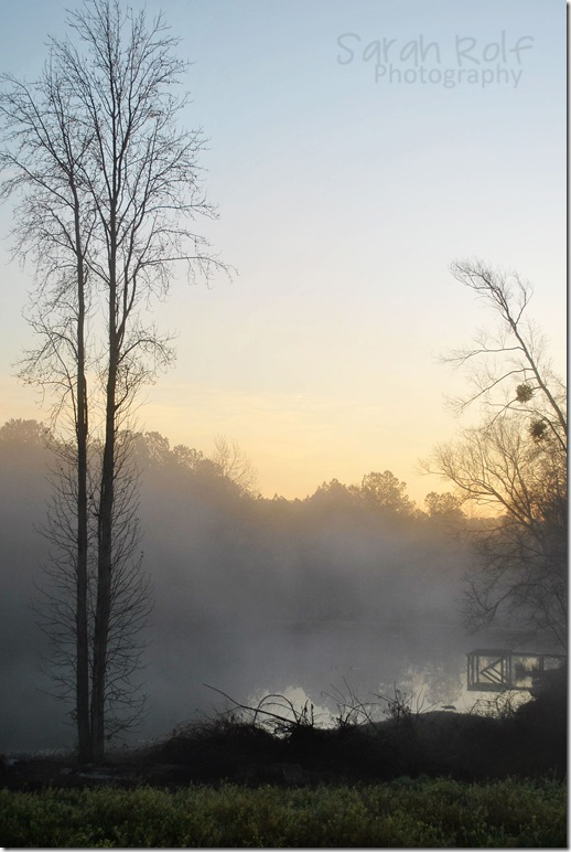 foggy-dawn-at-pond