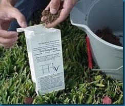 soil test in bucket
