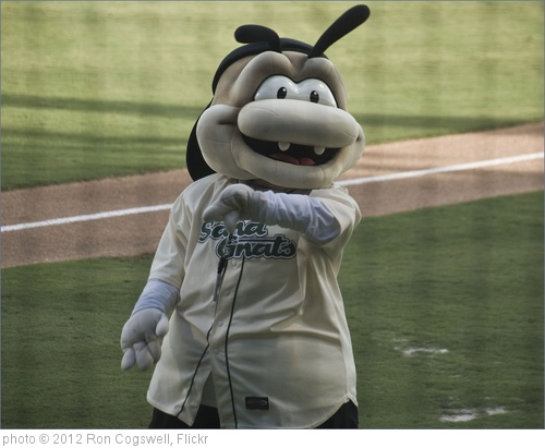 'Gnat, the Savannah (GA) Sand Gnats Mascot -- Historic Grayson Stadium Savannah (GA) July 19, 2012' photo (c) 2012, Ron Cogswell - license: http://creativecommons.org/licenses/by/2.0/