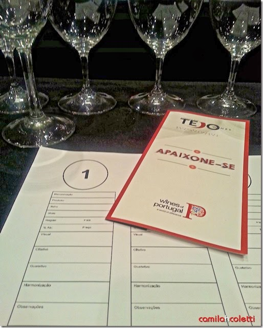 evento-tejo-brasil-vinho-e-delicias2
