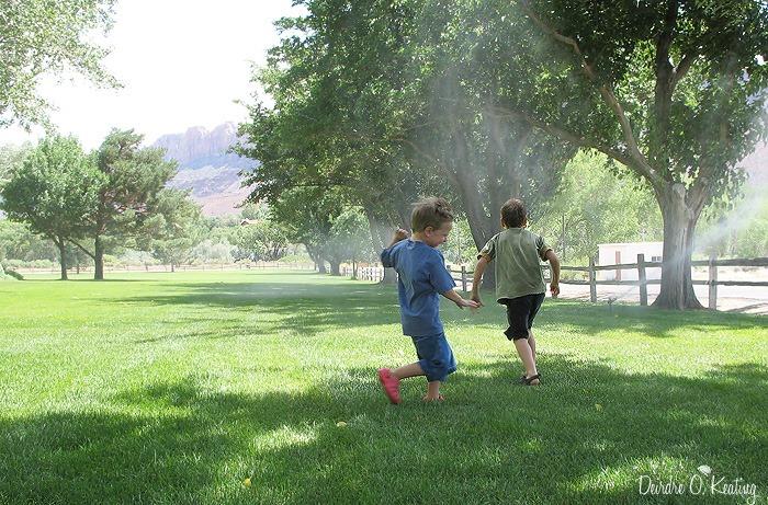 2013 07 12_1860 OCP sprinklers