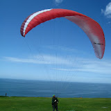 Flying Torrey Pines