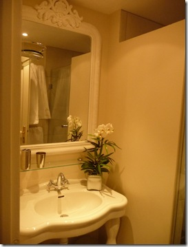 Shower room with towel racks