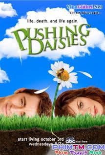 Nhật Ký Hoa Cúc :Phần 2 - Pushing Daisies Season 2 (2008) Tập 7 8 Cuối