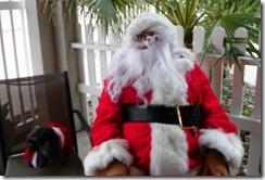 100_2534 Santa c