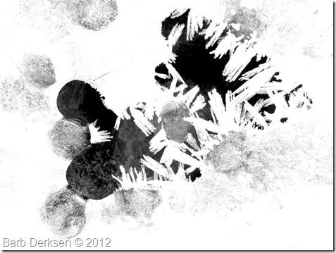 Barb Derksen Ice 2012  (3)