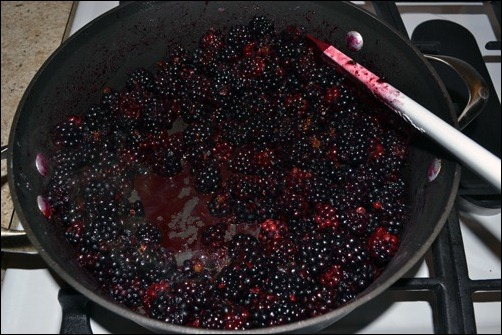 hot blackberries