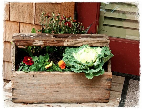 Fall box blog