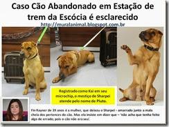 Caso Cão Abandonado em Estação de trem da_thumb[1]