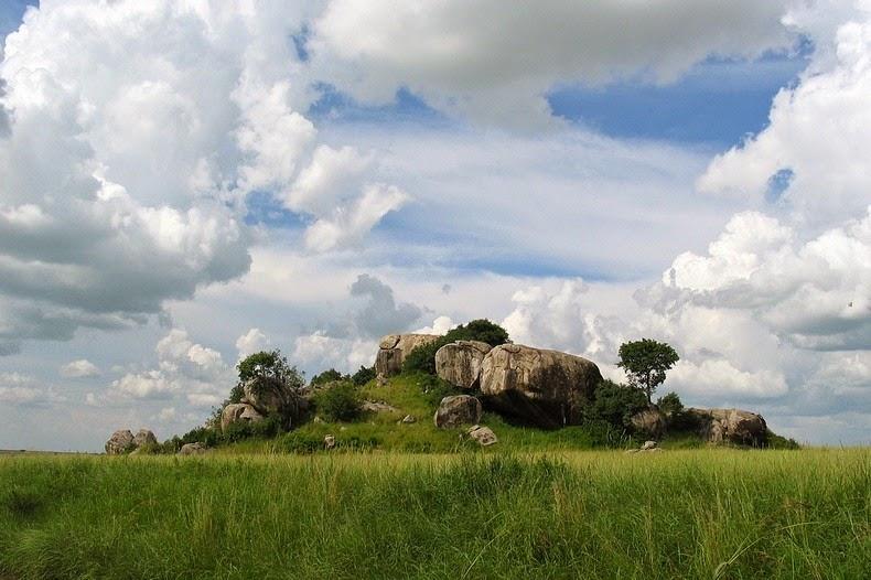 kopje-serengeti-4
