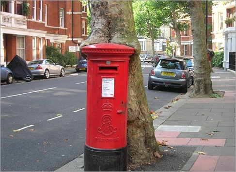British plane tree is slowly eating a post box in West Kensington