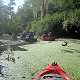 Two OClock Bayou Paddle July 14, 2012 - IMG_0036.JPG