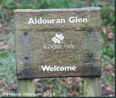 21-woodland-trust-sign