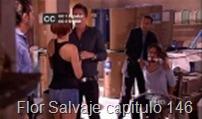 Flor Salvaje capitulo 146