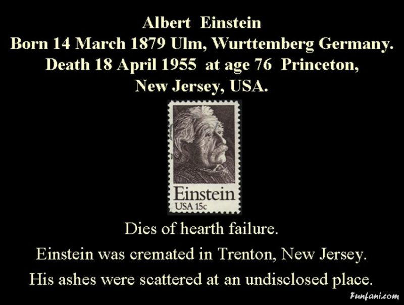 Famous Quotes By Albert Einstein...