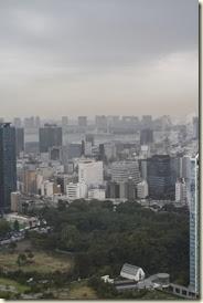 Tokyo 2013 010