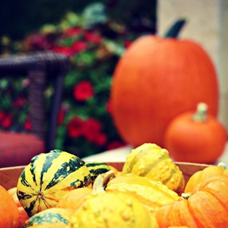 A pumpkin wreath (on the patio)