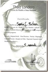 Certificado Curso Thaíz Londero