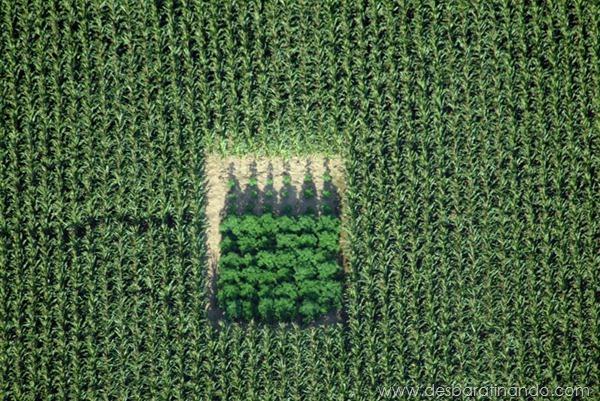 fotos-aereas-landscapes-paisagens-desbaratinando (12)