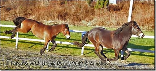 2012-ridebane_05