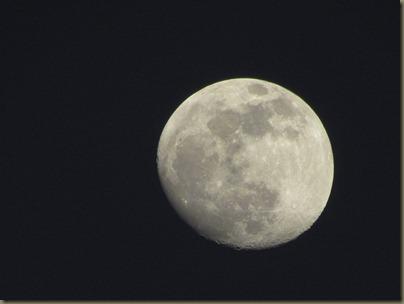 full moon over sunshine key