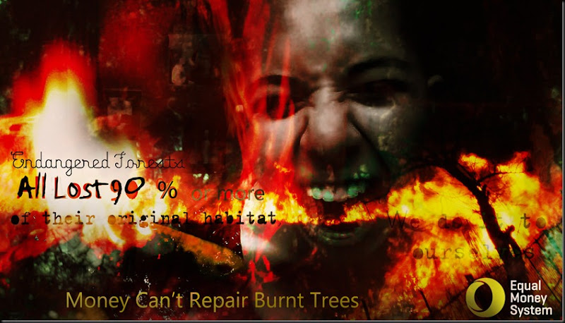 Burning Trees copy
