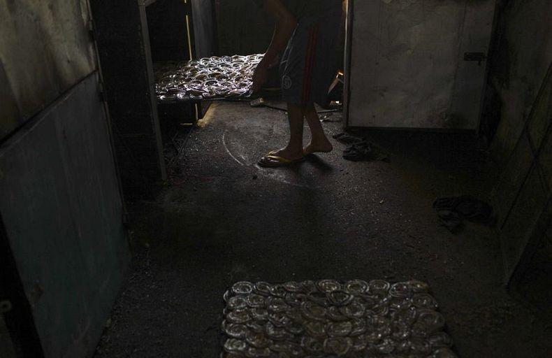 snake-slaughterhouse-1