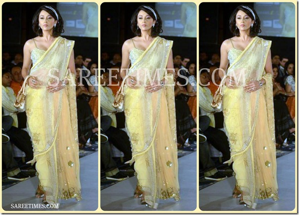 Embroidery_Shimmer_Saree