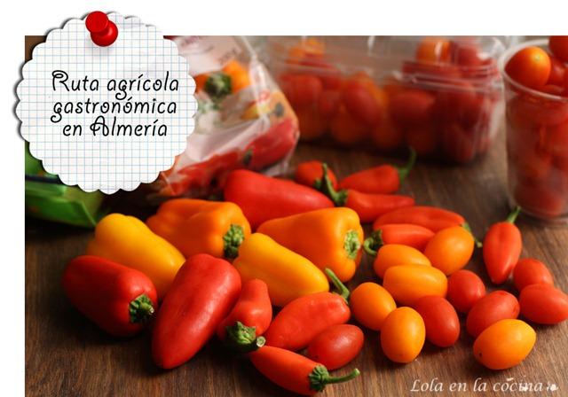ruta-agricola-almeria