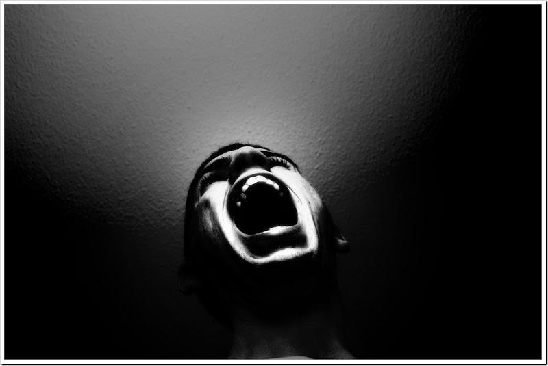 stolen-scream-noam-galai