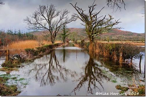 3-flooding-Mersehead