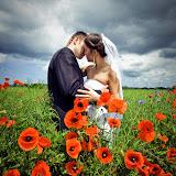Lubin – Zdjęcia ślubne w Lubinie