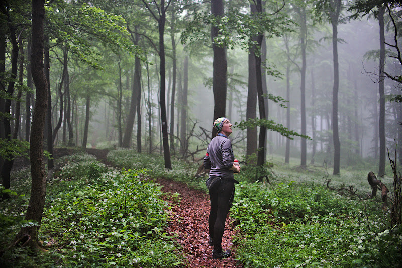Trail-running through a misty forest, near Ith in central Germany.