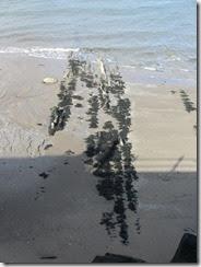 beach-abstact-1