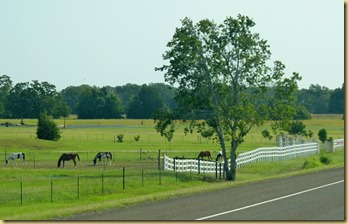 2012-05-16 - TX - On the Road (2)