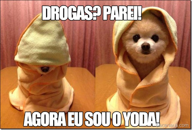 DROGAS-PAREI-YODA