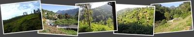Nilgiri Mountains anzeigen