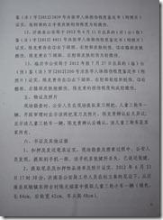 Chen Kegui Verdict 11