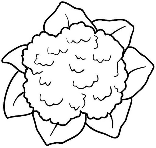 White skull clipart likewise Butterfly 20clipart 20outline 20 in addition Free Printable Octopus Coloring Pages For Kids additionally Whales Coloring Pages additionally Free Clipart Flower Clipart Black And White. on from carson dellosa clip art