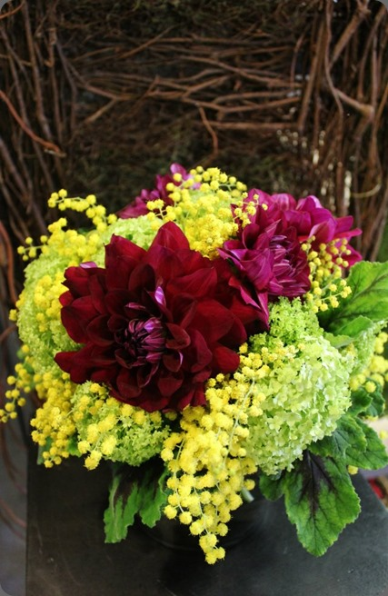 acacia 418076_10150705017023413_1256146770_n la petite fleur mn