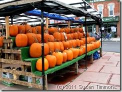 byward pumpkins