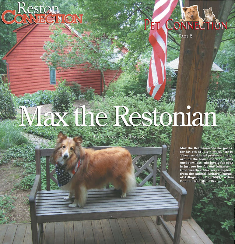 max restonian.jpg