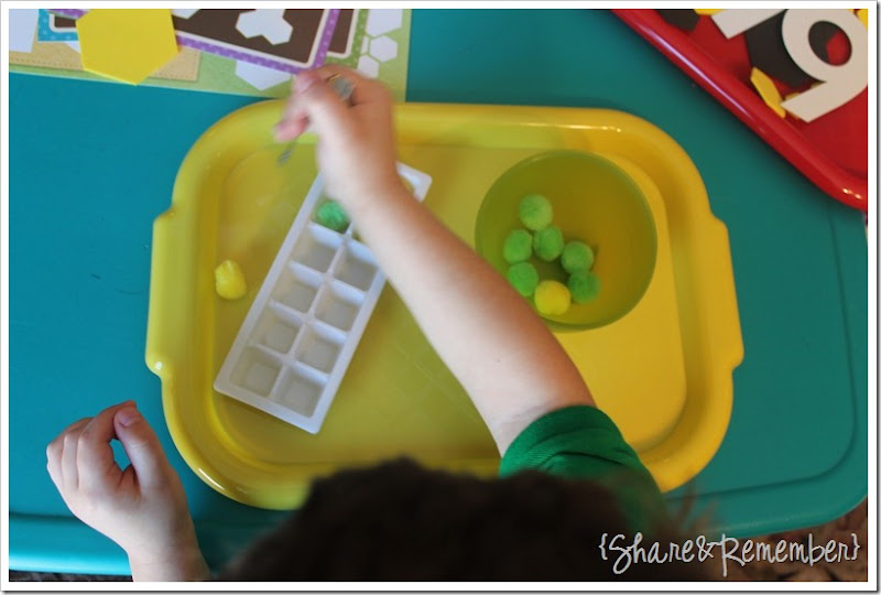 Preschool Activity Trays - one to one correspondence, fine motor skills, transferring