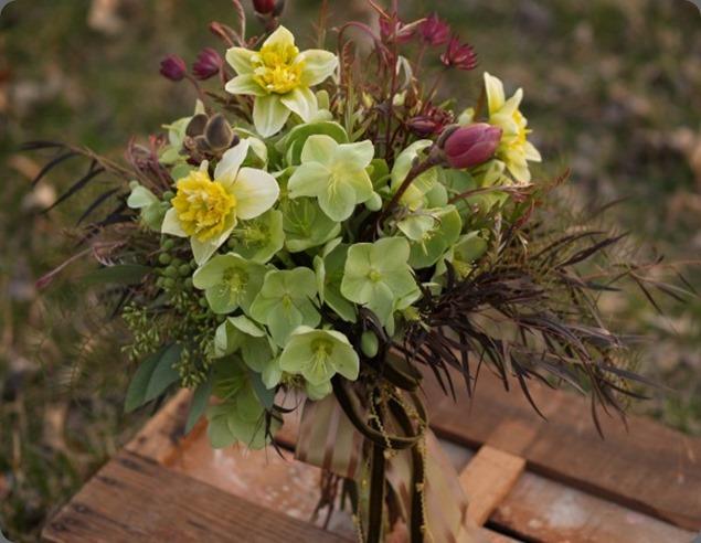P4287479-603x452 alluring blooms