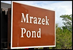 07 - Mrazek Pond Sign