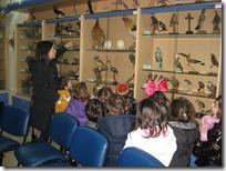 μουσείο φυσικής ιστορίας ΔΕΛΑΣΑΛ (1)