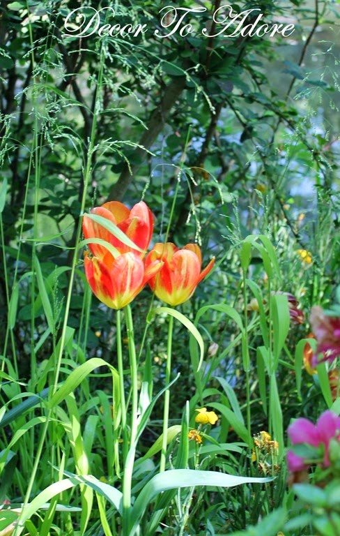 Monet's Garden 089