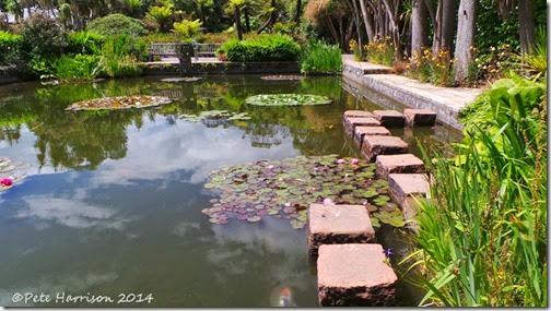 pond-logan
