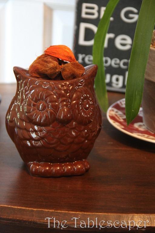 Owls 014